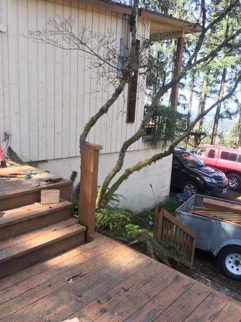Before Building New Deck